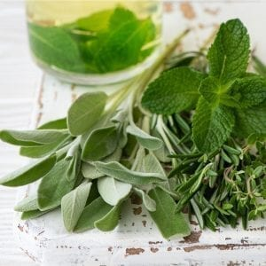 Peppermint, sage and parsley